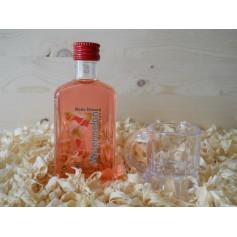 Botellin Miniatura Licor Wtermelon