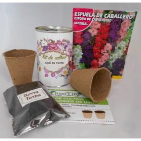 Kit de cultivo Espuela de Caballero para detalles invitados