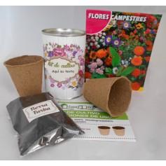 Kit de cultivo Flores Campestres para tus detalles de invitados
