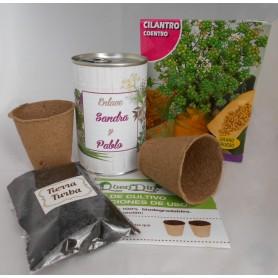 Kit de cultivo Cilantro para detalles invitados