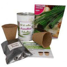 Kit de cultivo Cebollino para detalles originales