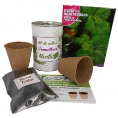 Kit de cultivo Menta para detalles originales invitados