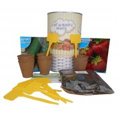 Kit de huerto infantil con semilleros, tierra turba, semillas tomate pepino, fresones y marcaje de semilleros