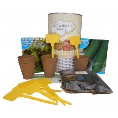 Kit de huerto infantil con semilleros, tierra turba, semillas pepino, semilla lechuga y marcaje de semilleros