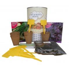 Kit de huerto infantil con semilleros, tierra turba, semillas Cebollino, semillas Albahaca y marcaje de semilleros