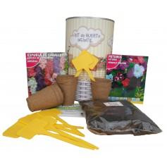 Kit de huerto infantil con semilleros, tierra turba, Espuela de Caballero, Petunia y marcaje de semilleros