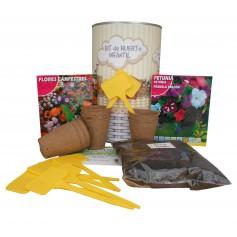 Kit de huerto infantil con semilleros, tierra turba, Flores Campestres, Petunia y marcaje de semilleros