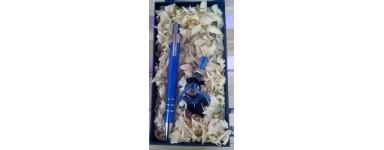 Set de llaveros con bolígrafos